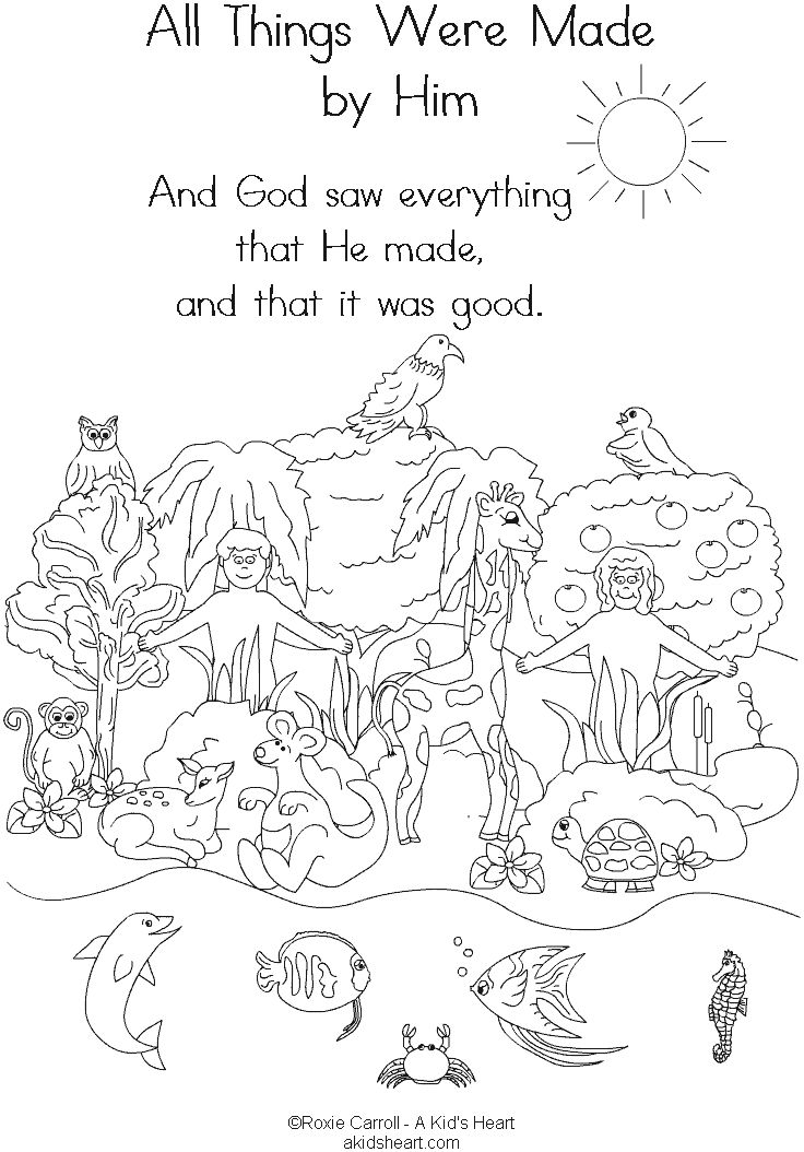 736x1054 Printable Creation Coloring Pages