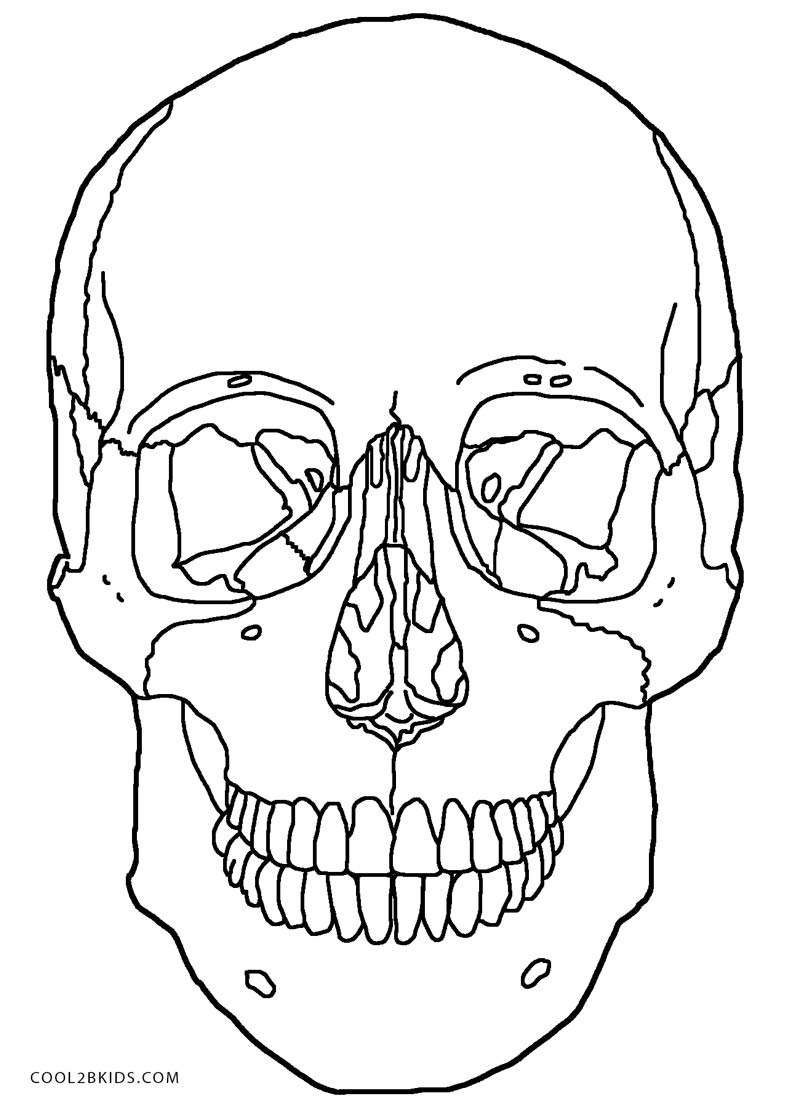 800x1108 Printable Skulls Coloring Pages For Kids