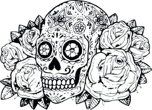 500x362 Skull Color Pages Coloring Page Adult Sugar Skull Coloring Pages