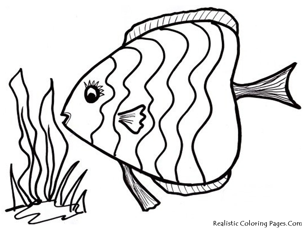 1024x768 Realistic Tropical Fish Coloring Pages