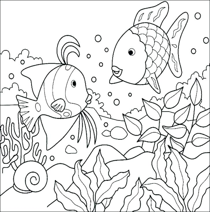 728x735 Tropical Coloring Pages Tropical Fish Coloring Pages Tropical