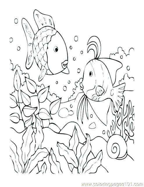 495x640 Tropical Coloring Pages Tropical Fish Coloring Pages Tropical Fish