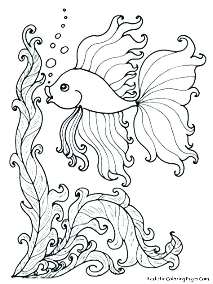 687x916 Tropical Coloring Pages Tropical Flower Coloring Pages Tropical