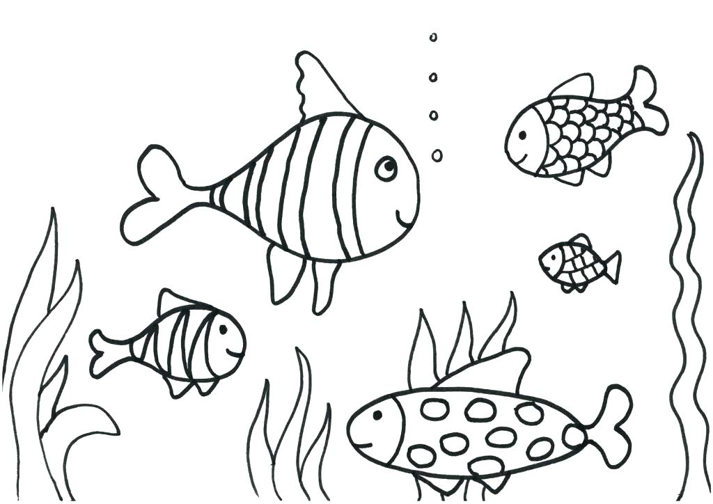 1024x724 Tropical Fish Coloring Pages Fish Coloring Pages For Adults Plus
