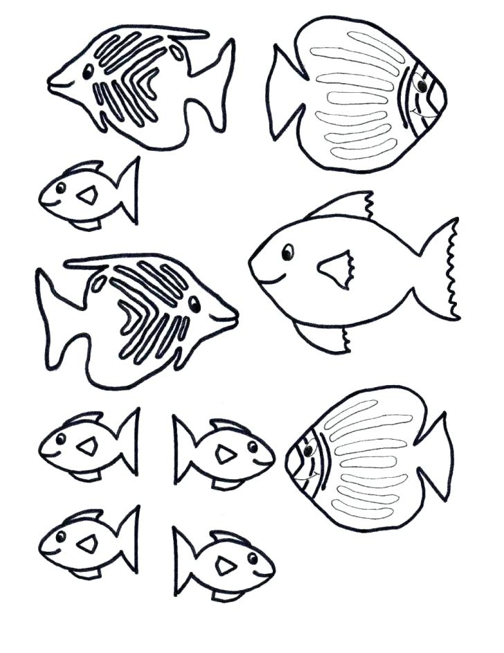 728x943 Fish Coloring Template Printable Fish Coloring Pages Jellyfish