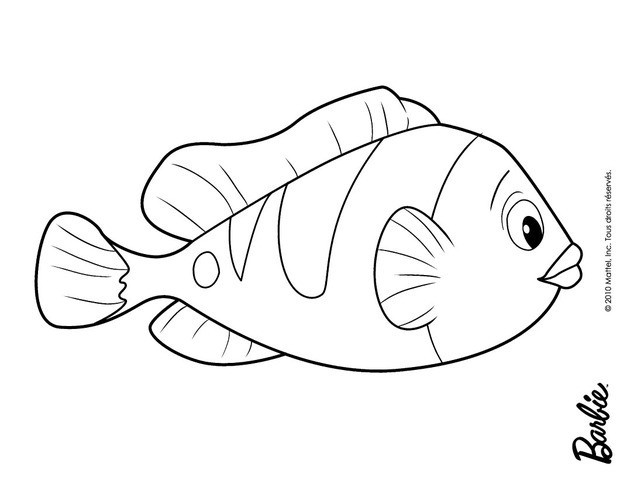 620x480 Fish Of Oceana Coloring Pages Hellokids Com Images To Color We