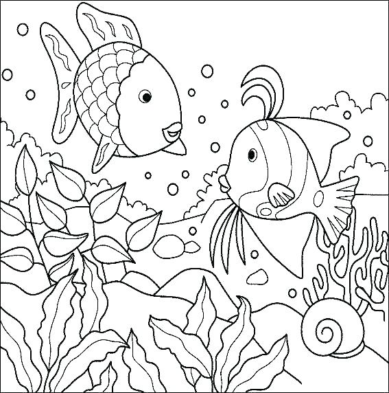 567x572 Jelly Fish Coloring Page Tropical Fish Coloring Pages Fish