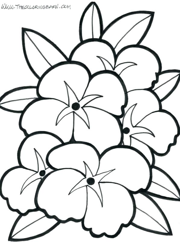597x800 Flower Tropical Flower Coloring Pages Sunflowers In A Vase