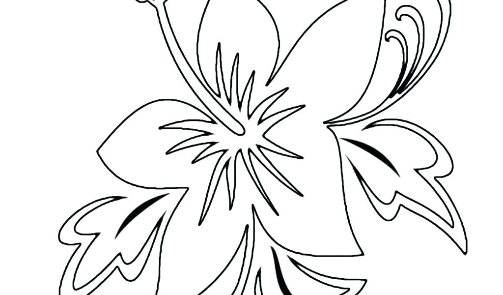 1024x600 Flowers Flower Tropical Flower Coloring Pages Sunflowers Flowers