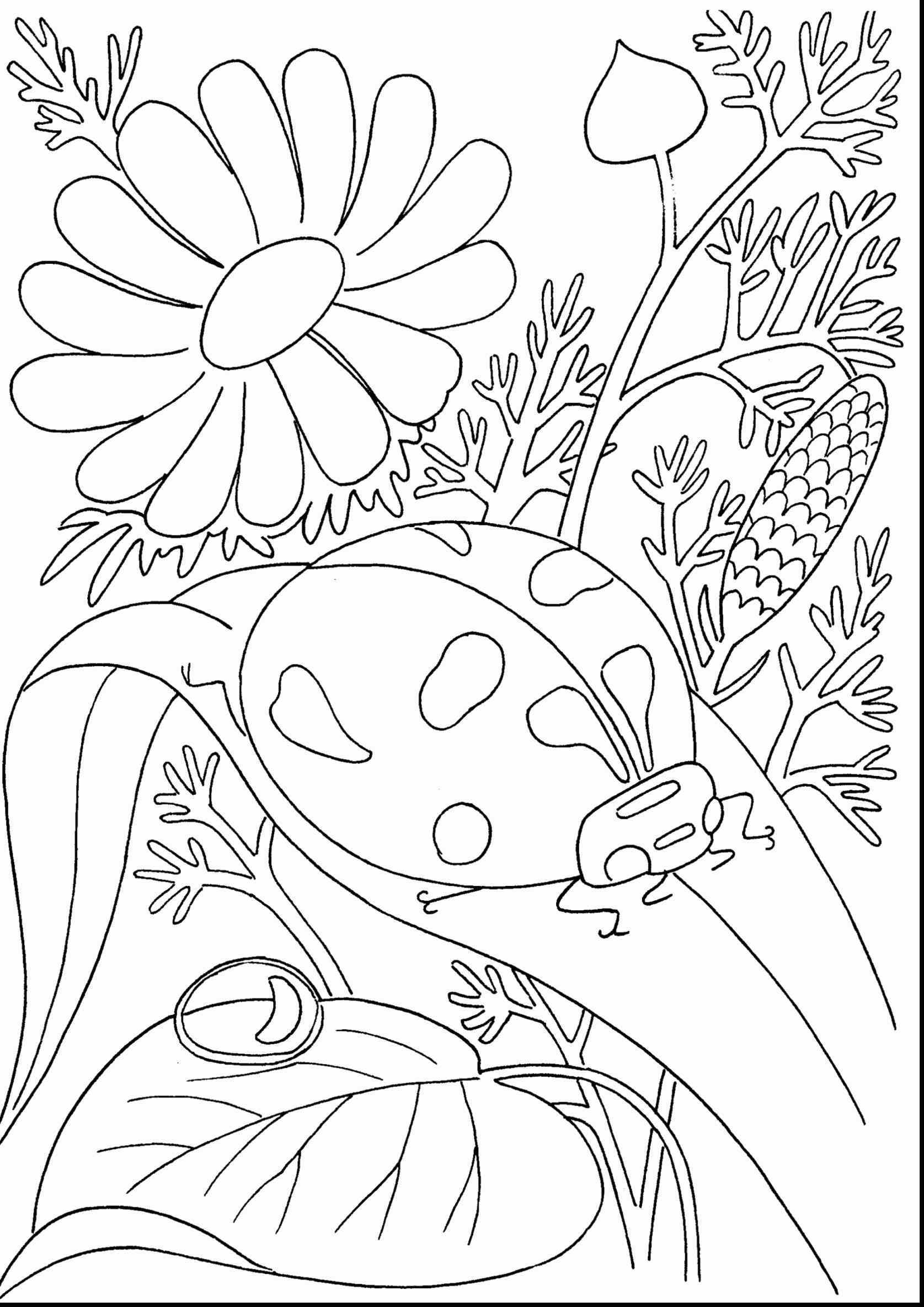 1675x2368 Awesome Tropical Flower Coloring Pages Collection Printable