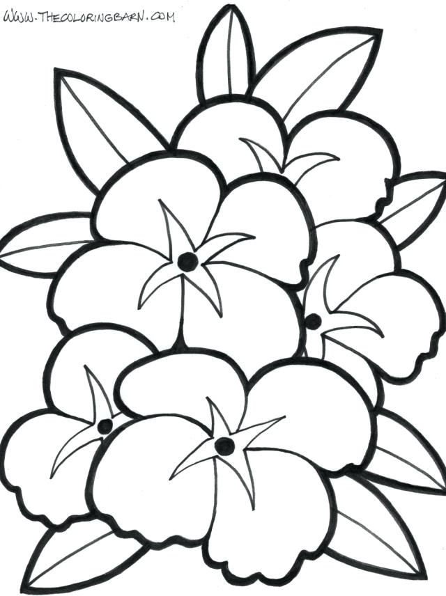 640x856 Coloring Pages Flower Coloring Pages Flower Coloring Pages Best