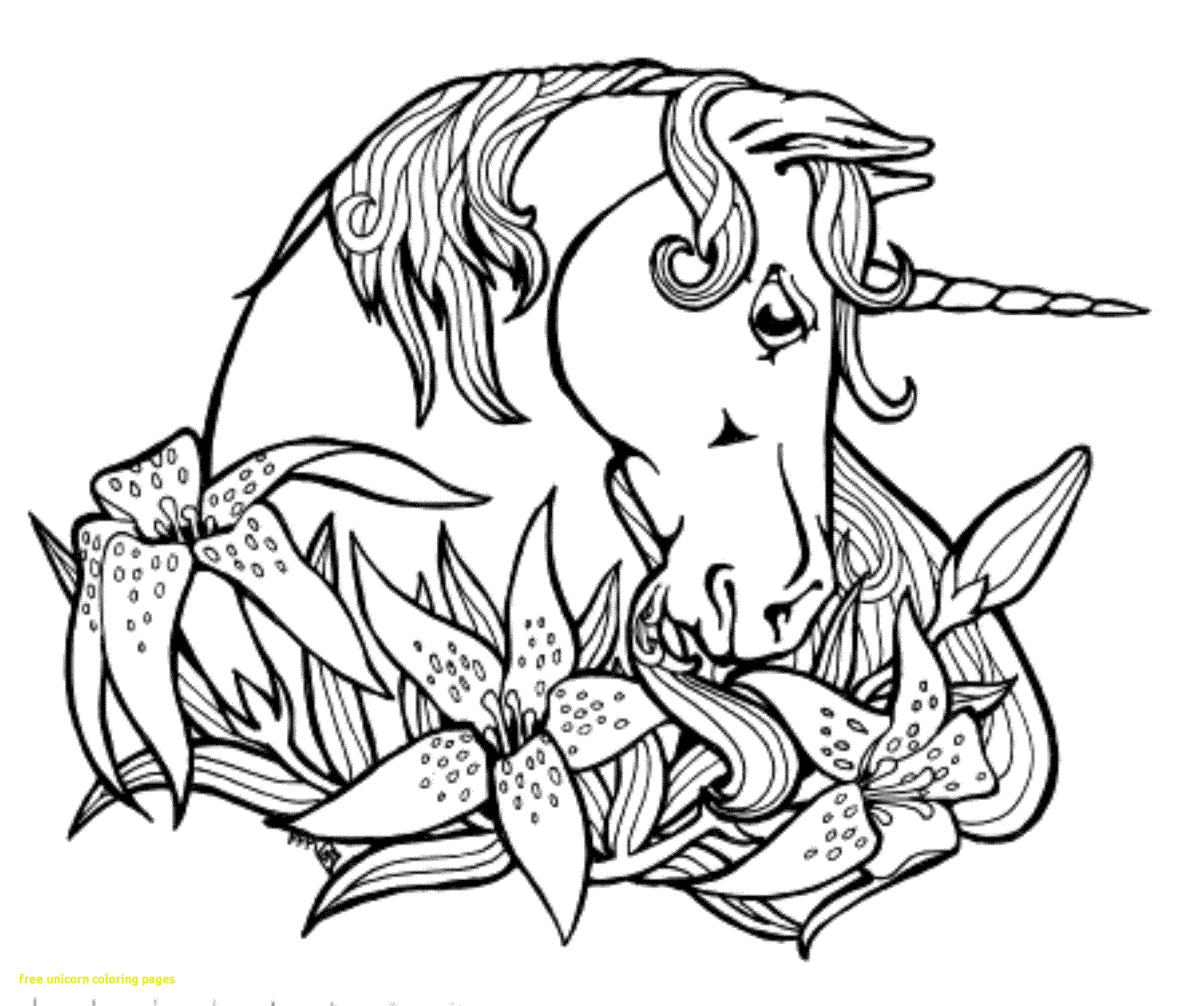 2551x2132 Expert Coloring Pages Of Unicorns To Print Free Unicorn With Fresh