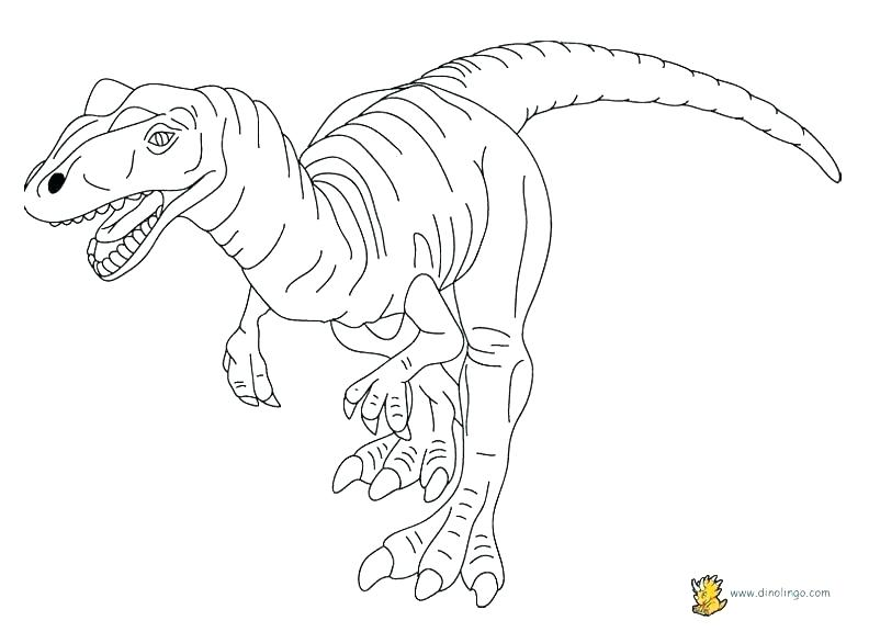792x576 Extinct Animals Coloring Pages Desert Animal Coloring Pages Desert