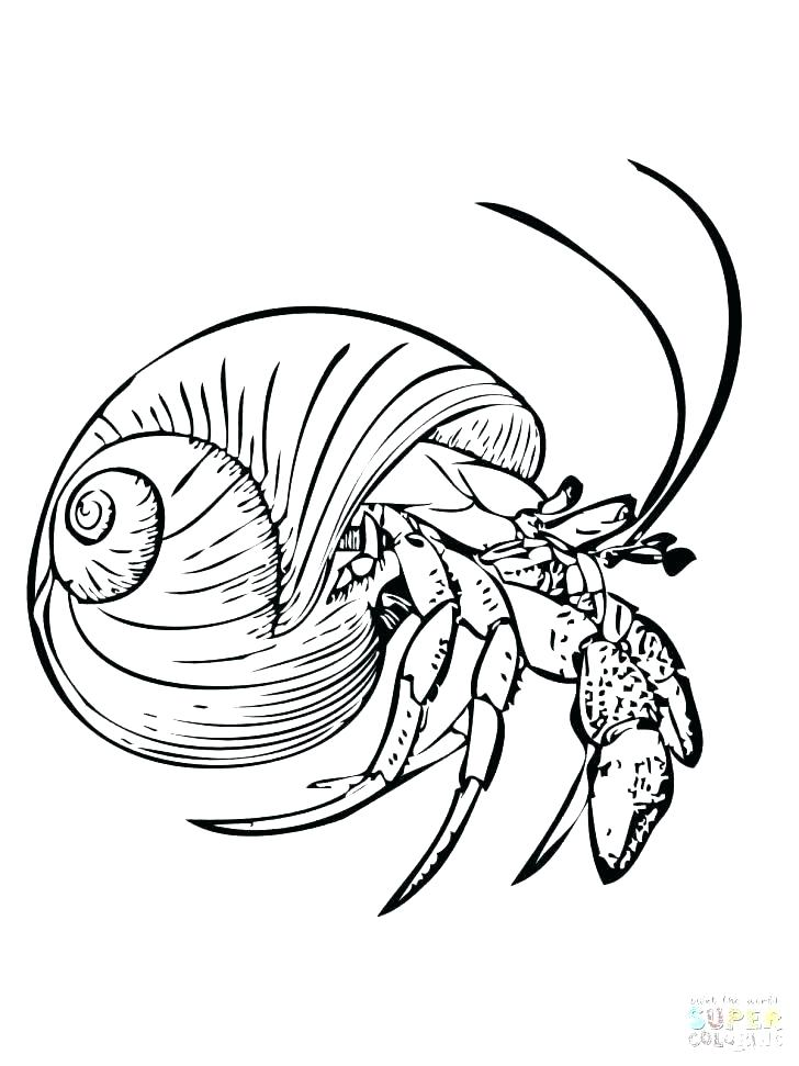 728x971 Eyeball Coloring Pages An Eye Coloring Page Hawkeye Coloring