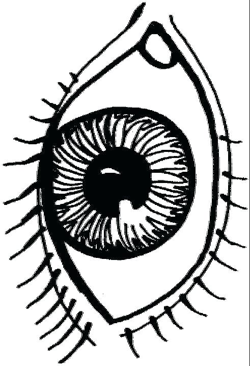 491x718 Eye Coloring Page Cartoon Eyes Eye Spy Colouring Pages