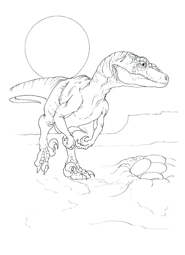 640x880 Raptor Coloring Pages Coloring Pages Park Coloring Page Park