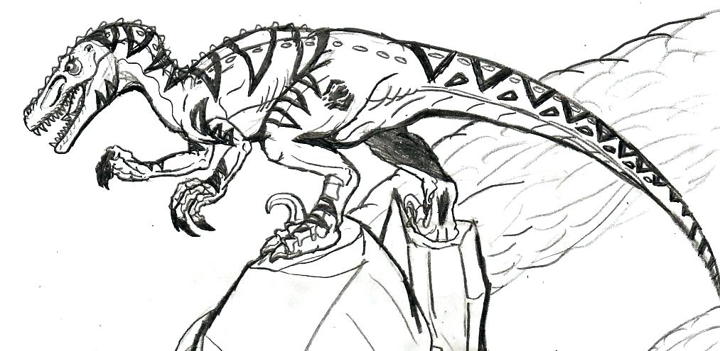 1013x495 Contemporary Raptor Coloring Pages Sketch