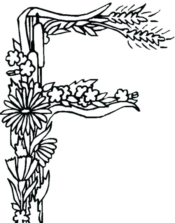 600x766 Letter Coloring Pages For Toddlers Kids Coloring Letter F Coloring