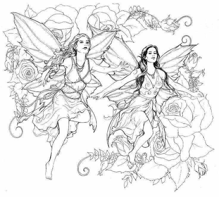 736x663 Fairy Coloring Pages For Adults