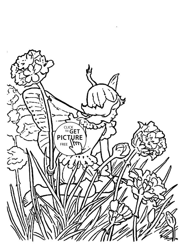 736x986 Fairy Coloring Pages Girls Awesome Best Coloring Pages