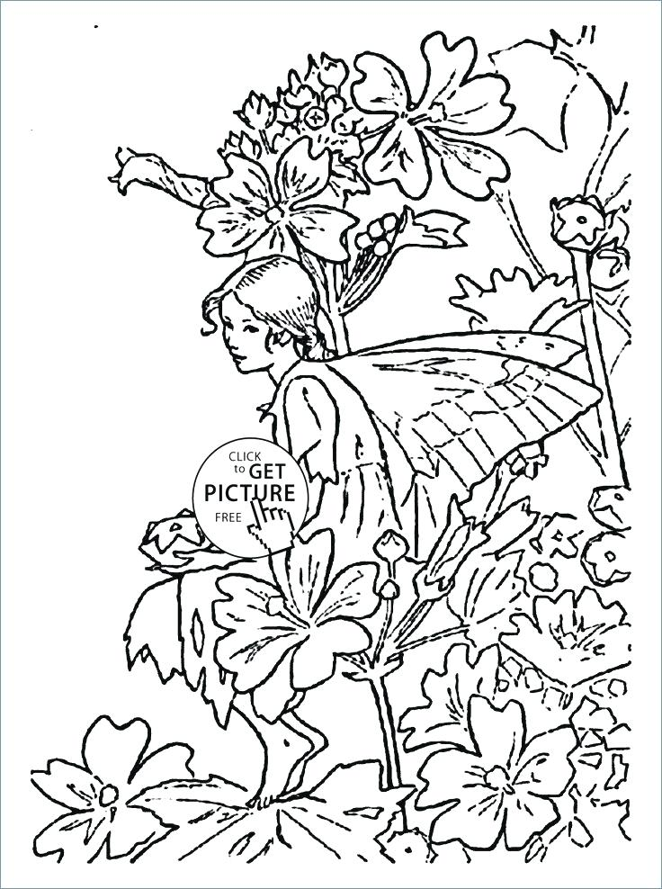 736x988 Flower Fairy Coloring Pages