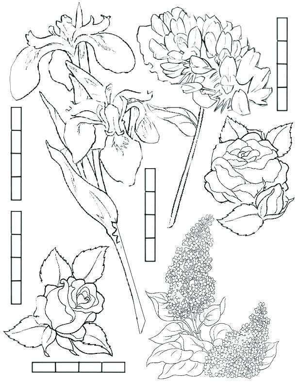 612x792 Fairy Garden Coloring Pages Coloring Book Garden Fairy Rosetta