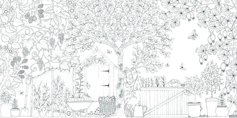 920x460 Garden Fairies Coloring Pages Jobi Club