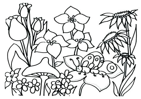 476x333 Coloring Pages Garden Fairy Garden Coloring Pages Fresh Flower