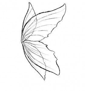 281x300 Fairy Wings To Color Fairy Wings Coloring Page Ready Printed Pic