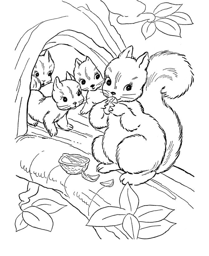 Fall Animals Coloring Pages