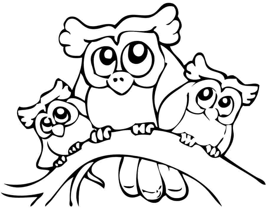 902x717 Cute Printable Owl Coloring Pages For Kids