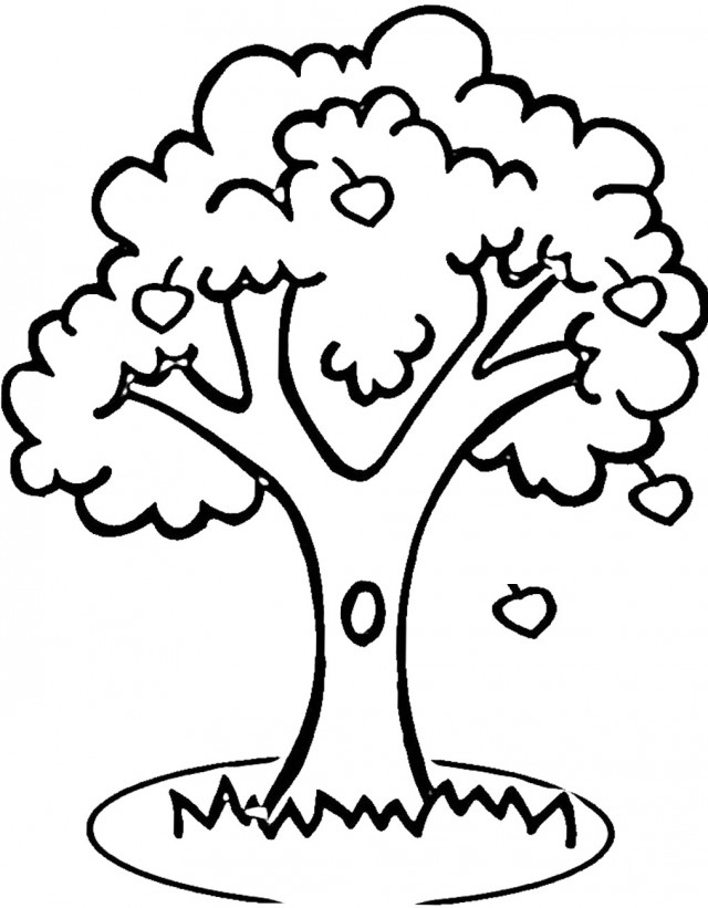 640x821 Apple Coloring Pages To Print