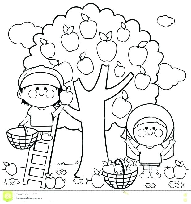 618x661 Apple Tree Coloring Page Apple Tree Coloring Pages Realistic Apple