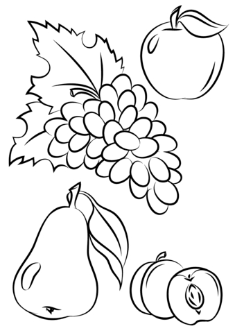 339x480 Fresh Autumn Fruitcoloring Pages Collection Printable Coloring Sheet