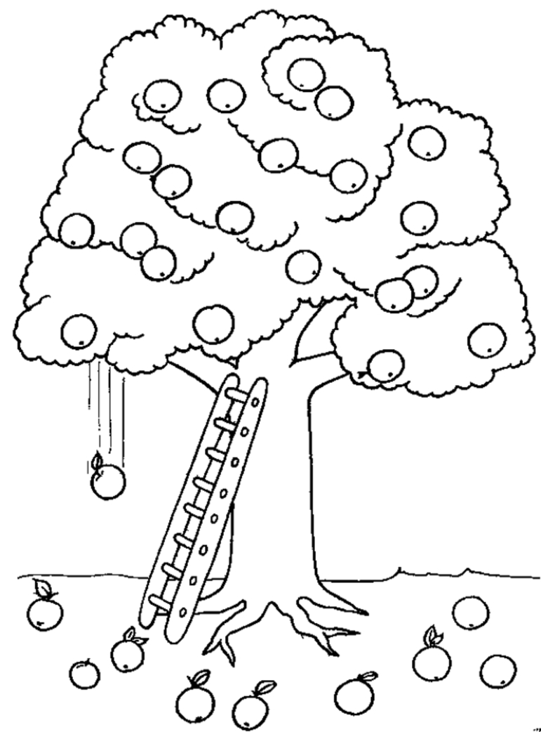 771x1042 New Fruit Tree Coloring Pages Design Printable Coloring Sheet