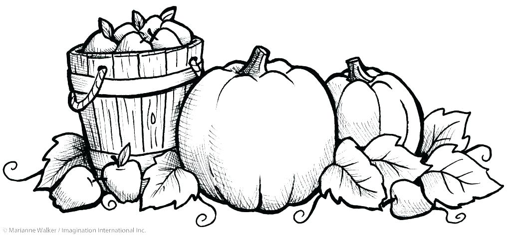 1024x474 Fall Coloring Pages Free