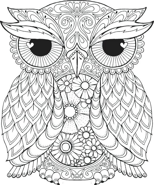 535x645 Elegant Fall Coloring Pages For Adults And A Fall Coloring Page