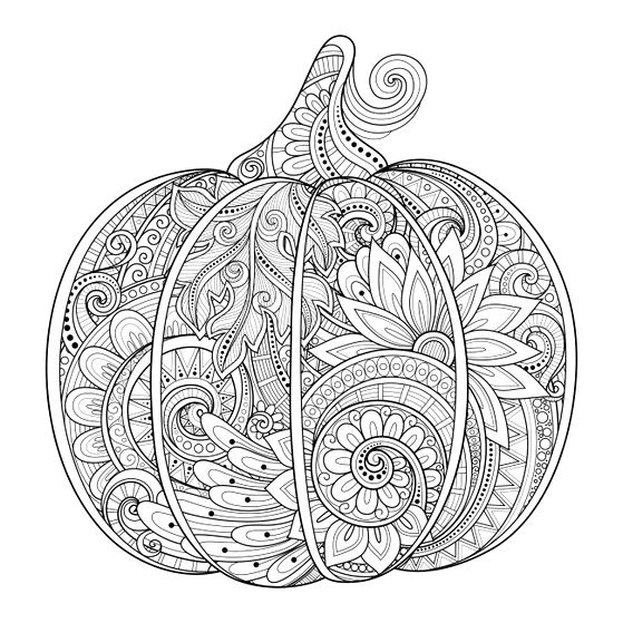 559x559 Fall Coloring Pages For Adults
