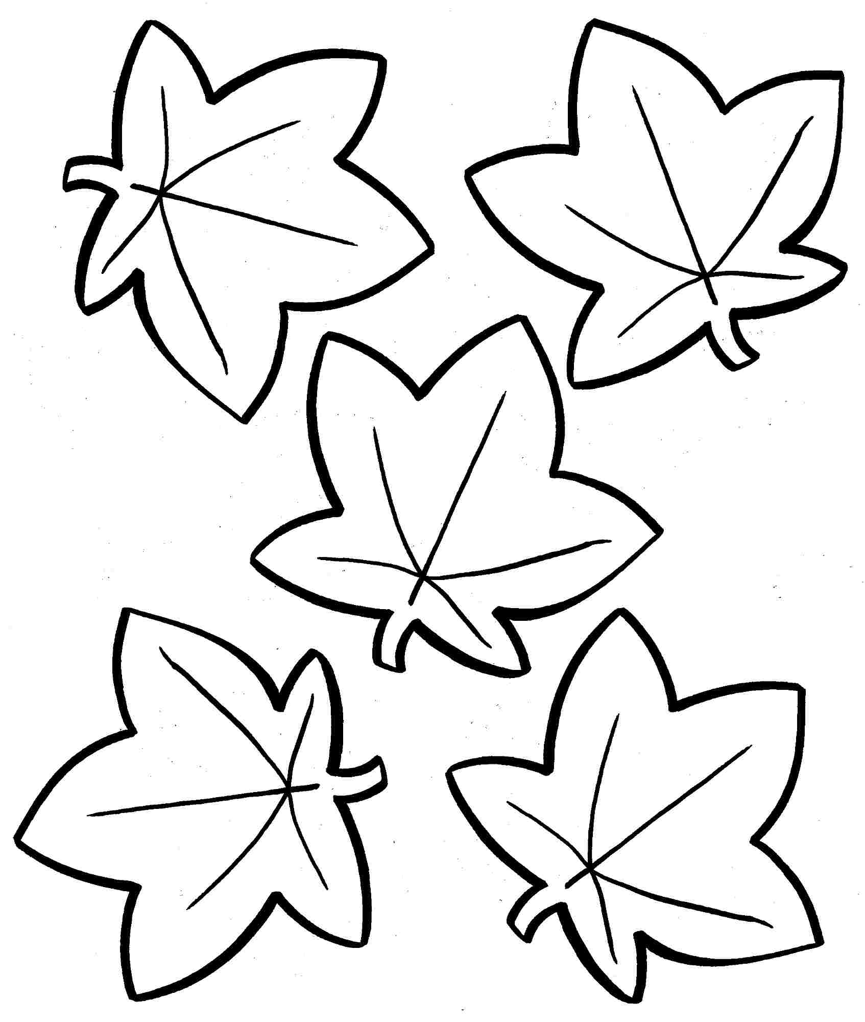 1694x2000 Leaves Coloring Sheet