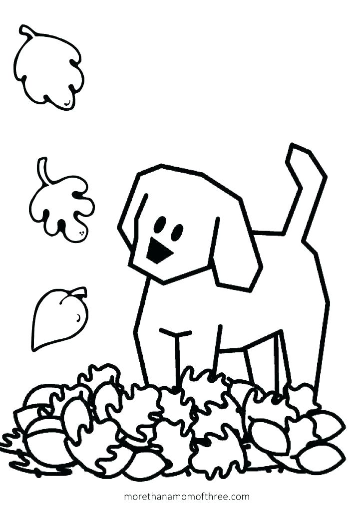 723x1024 Fall Coloring Sheets For Preschoolers Autumn Leaves Coloring Pages