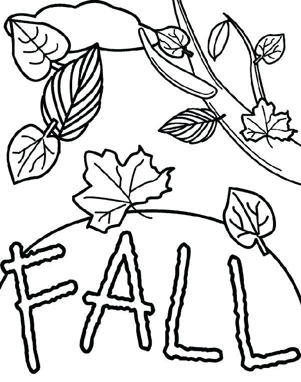 601x762 Leaf Coloring Pages Printable Vanda