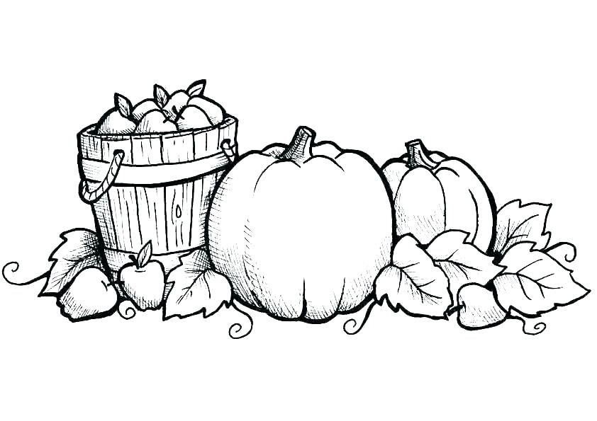842x595 Thanksgiving Leaves Coloring Pages Fall Autumn Leaves Coloring