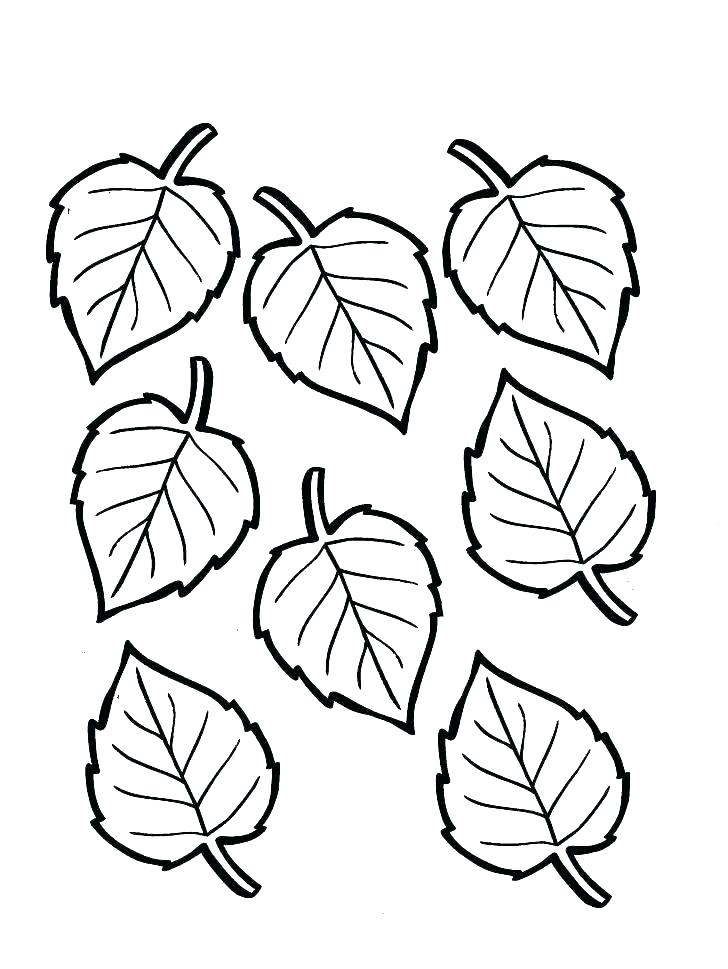 728x969 Leaf Coloring Pages