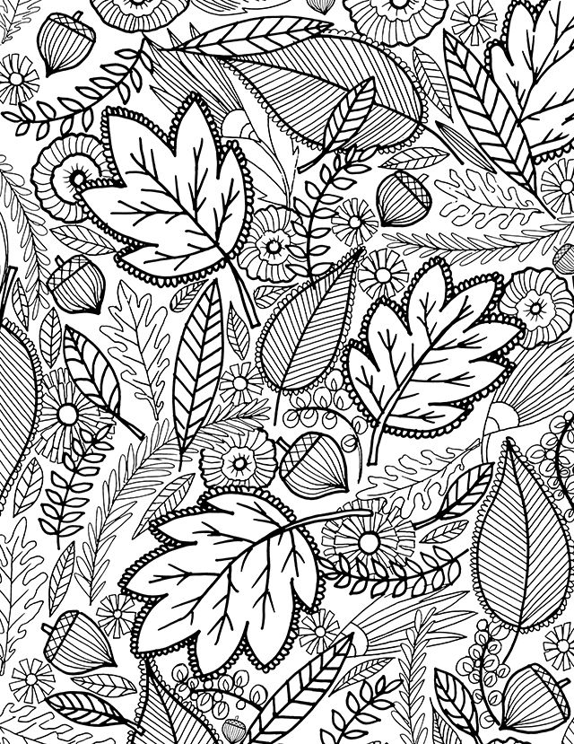 640x829 Autumn Coloring Pages For Adults Color Bros