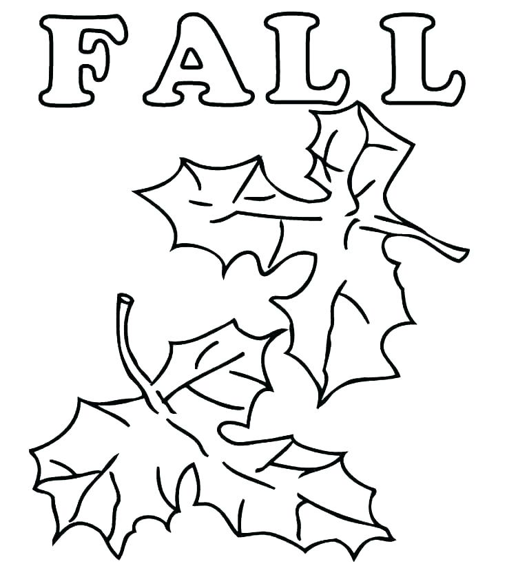 736x822 Fall Coloring Pages To Print Free Printable Autumn Coloring Pages