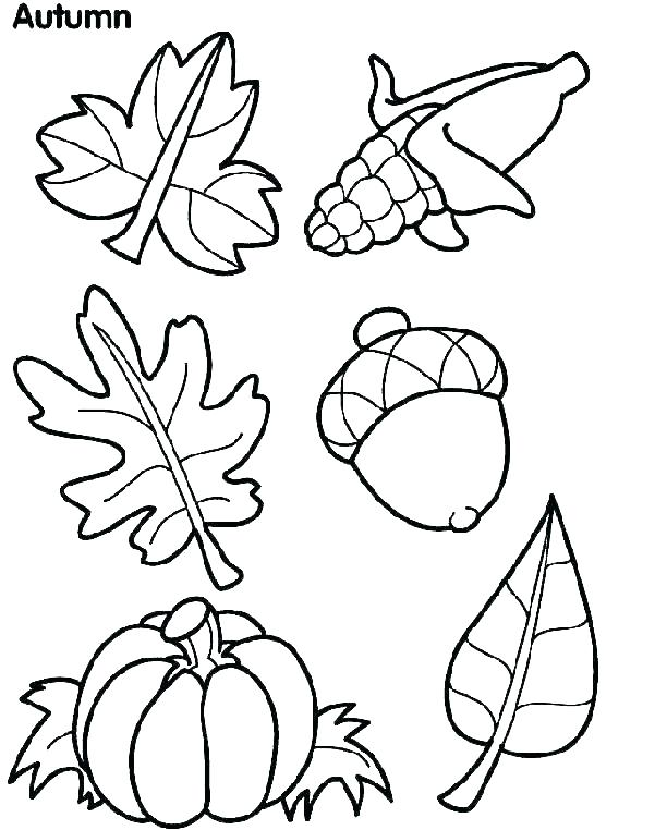 601x762 Free Coloring Pages For Fall Preschool Fall Coloring Pages