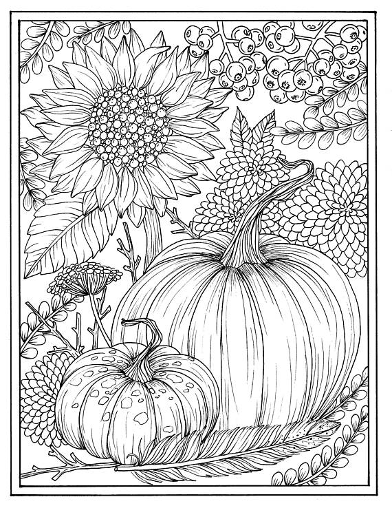 570x738 Fall Flowers And Pumpkins Digital Coloring Page Thanksgiving