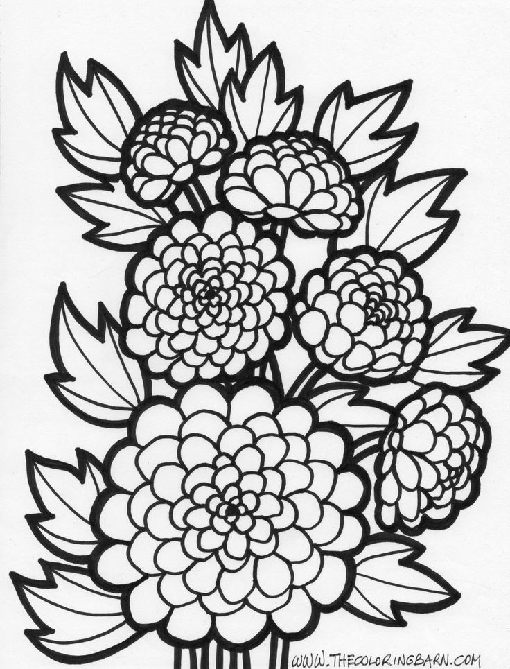 736x965 Flower Coloring Pages Project For Awesome Flower Coloring Pages