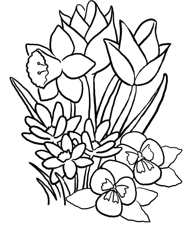 615x741 Easy Printable Flower Coloring Pages