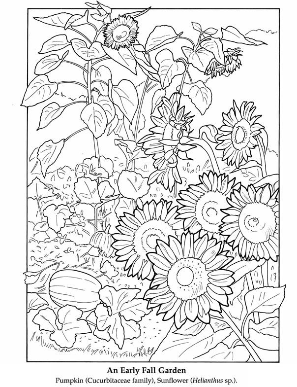 604x785 Best Coloring Pages Images On Coloring Pages